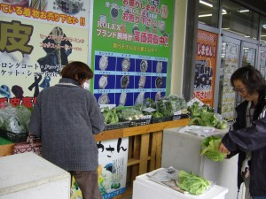 エコパーク 野菜